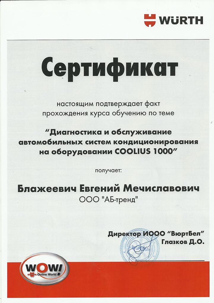 sertificat_2